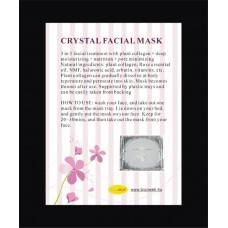 x Crystal arcmaszk x